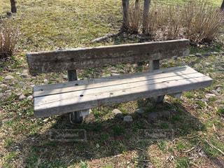 公園の真ん中に座っている木製のベンチの写真・画像素材[1101445]