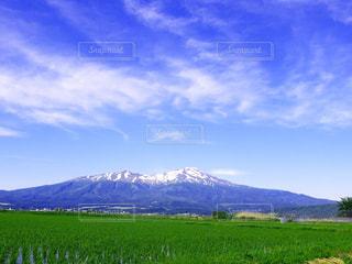背景の山に大規模なグリーン フィールドの写真・画像素材[1022029]