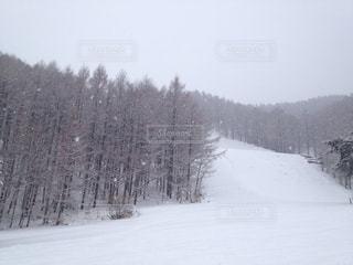 雪のスキー場の写真・画像素材[1021328]