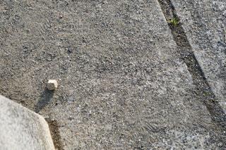 石ころの写真・画像素材[1023040]