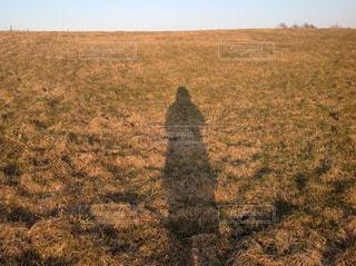 夕方1人歩いての写真・画像素材[1021411]