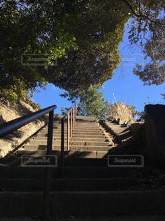階段の先にの写真・画像素材[1025729]
