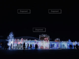 冬の光の写真・画像素材[1022634]
