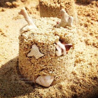 砂浜遊びの写真・画像素材[1022059]