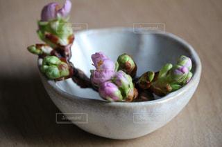 桜の写真・画像素材[1023610]