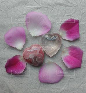 花びらとハートの写真・画像素材[1651262]