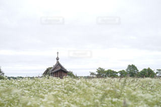キジ島にある教会の写真・画像素材[1022845]