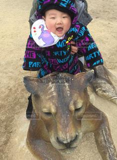 ライオンに座って笑う赤ちゃんの写真・画像素材[1022903]