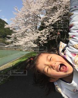 桜だー‼︎ - No.1098106