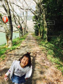 笑顔の桜道の写真・画像素材[1098108]