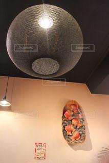 鯛と照明の写真・画像素材[1053217]