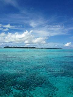 パラオ海の写真・画像素材[1024049]