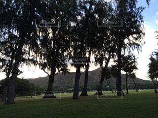 カピオラニ公園からのダイヤモンドヘッドの写真・画像素材[1023799]