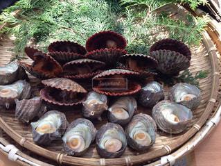 たくさんの魚貝類の写真・画像素材[1823300]