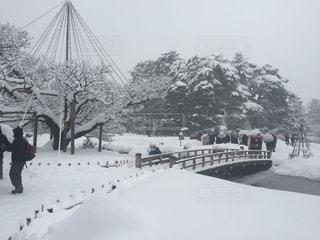 雪の中歩く人々と兼六園の写真・画像素材[1024074]