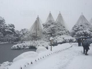 雪の兼六園の写真・画像素材[1024075]