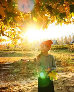 背景の木と緑のフィールドの前に立っている女の子の写真・画像素材[1025435]