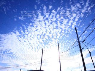近くに街灯柱のアップの写真・画像素材[1032780]