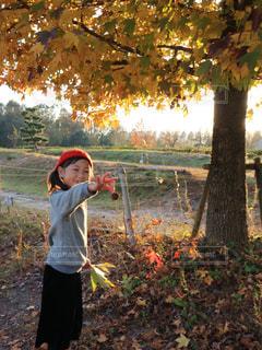 木の隣に立っている少年の写真・画像素材[1054743]