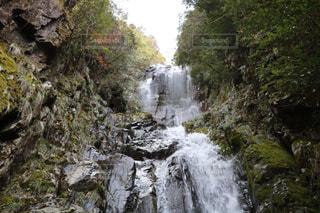 森の中の大きな滝の写真・画像素材[1025977]