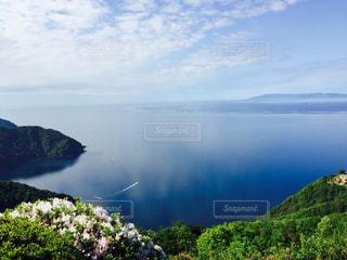 白い花と青い湖の写真・画像素材[1026335]