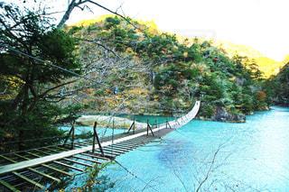 夢の吊り橋の写真・画像素材[1027992]