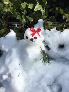 かわいい雪だるまの写真・画像素材[1026502]