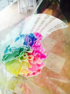 虹色のカーネーションの写真・画像素材[1026767]