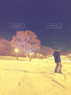 スキー場のツリーの写真・画像素材[1030367]