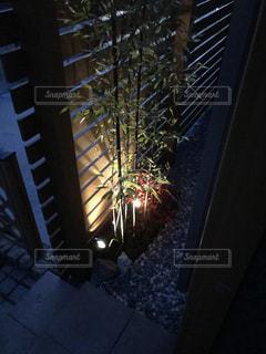 和のプチ庭の写真・画像素材[1053215]