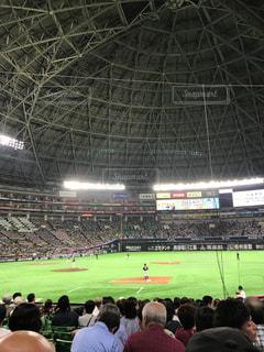 野球観戦の写真・画像素材[1027566]