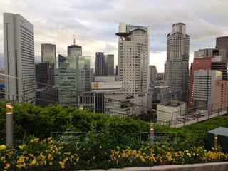 都市の高層ビルの写真・画像素材[1028274]