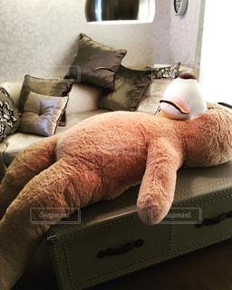 ソファに座っているぬいぐるみの写真・画像素材[1027885]