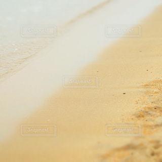 水と陸との写真・画像素材[1029020]