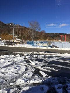 雪に覆われたフィールドの写真・画像素材[1028998]
