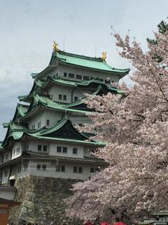名古屋城の屋根の写真・画像素材[1029410]