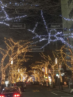 東京の夜景の写真・画像素材[1030066]