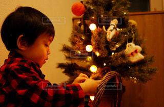 ハロウィンツリーに飾り付けをする男の子の写真・画像素材[1505931]