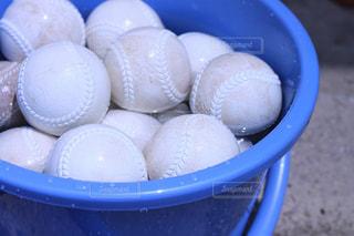 夏のボール洗いの写真・画像素材[1029859]