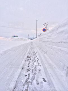 雪国の歩道の写真・画像素材[1030966]