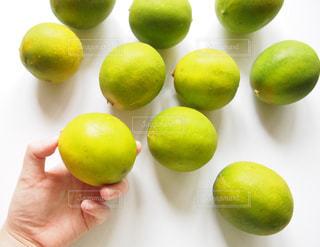 レモンの写真・画像素材[1039602]