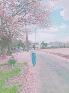 木の下に立っている人の写真・画像素材[4309615]