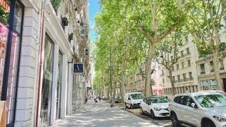 建物と樹木のある通りの写真・画像素材[4641936]