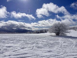 菅平高原の写真・画像素材[1076334]