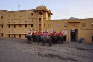 象のタクシーの写真・画像素材[1035478]