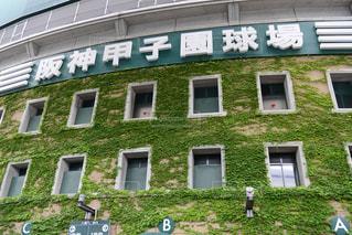 甲子園球場の写真・画像素材[1042760]