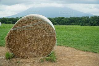 干し草の写真・画像素材[1044858]