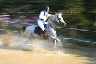 馬に乗る人の写真・画像素材[1044908]