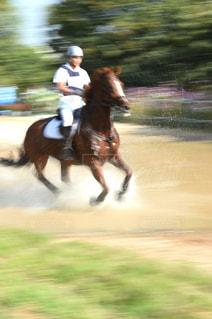 馬に乗る男の写真・画像素材[1044909]