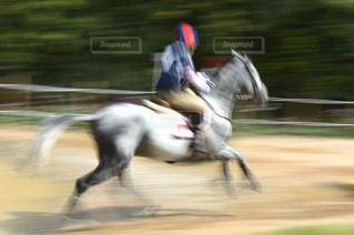 乗馬の写真・画像素材[1044912]